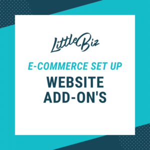 E-Commerce Set-up: Little Biz Website Packages
