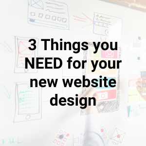 Little Biz Hints & Tips : 3 Things You NEED For Your New Website